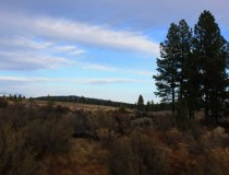Bend, OR 10.02 Acres $535,000