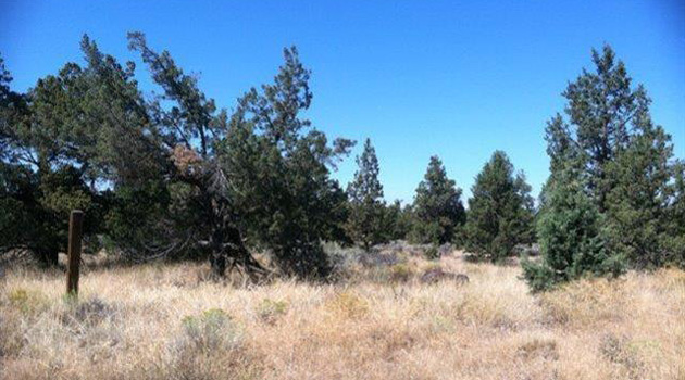 For Sale: Redmond OR 5 Acres $135,500